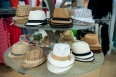 Assorted fedoras priced from $20.00 found in accessories at Gibbons Company.